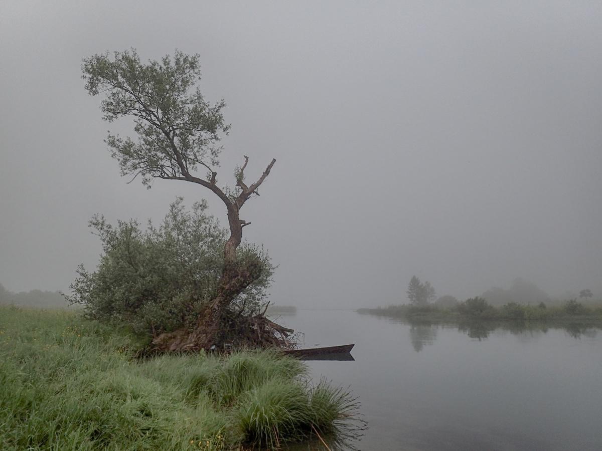 jezero plav